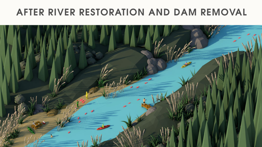 After river restoration and dam removal graphic