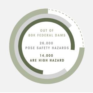 Dam infographic